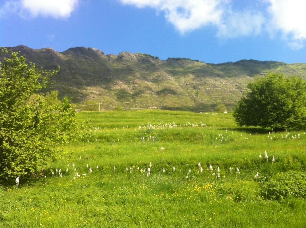 Monti Val Cichero
